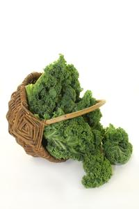 Brussel Kale: The Superfood Of The Future