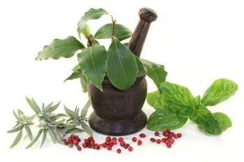 Southeast Wise Women Herbal