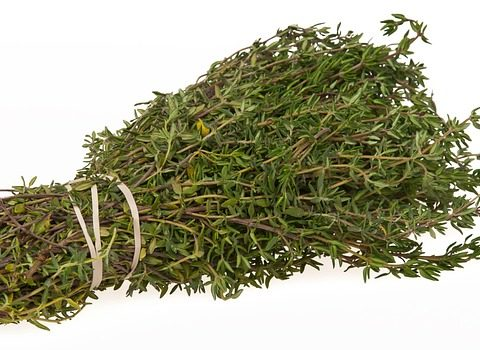 "Is it really ""thyme"" to grow herbs?"