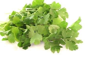 Britain's Favourite Herb