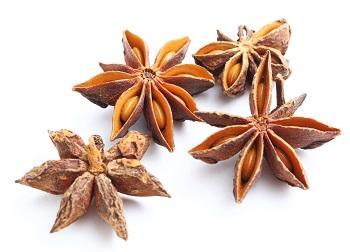 Herb-Seasoned Condiments