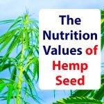 Superfood-Nutrition-Hemp-Seed