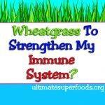 wheatgrass immunesystem