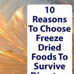 Superfood--Dried-Freeze-Food