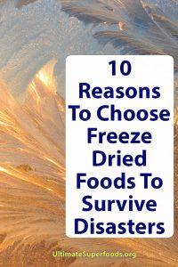 Superfood--Dried-Freeze-Food