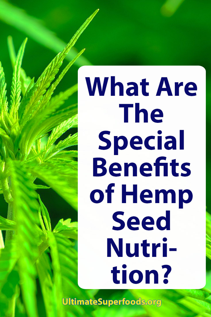 Superfood-Hemp-Seed