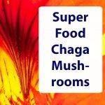 Superfood-Chaga-Mushroom