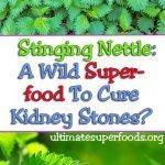 stinging-nettle-pinterest-