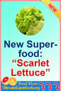 Superfoods-Lettuce