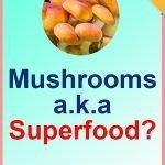 Superfoods-Mushrooms