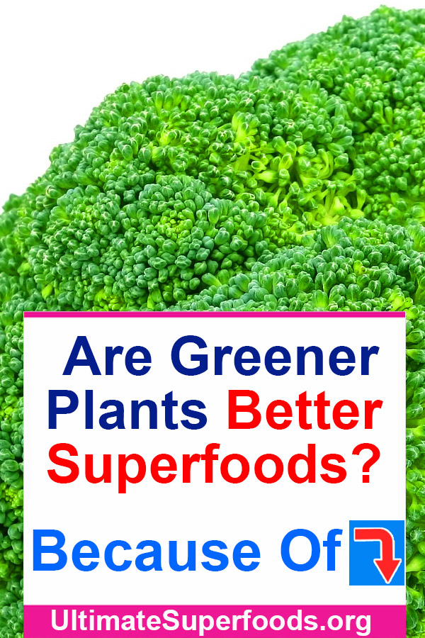 Superfoods-Green-Plants