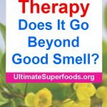 Does It Go BEYOND Good Smell?