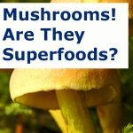 Mushrooms! Are They Superfoods?
