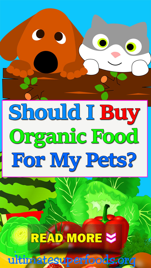 superfood-buy-organic-pets
