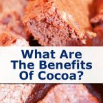 What Are The Benefits Of 🍫 Cocoa Nibs❓