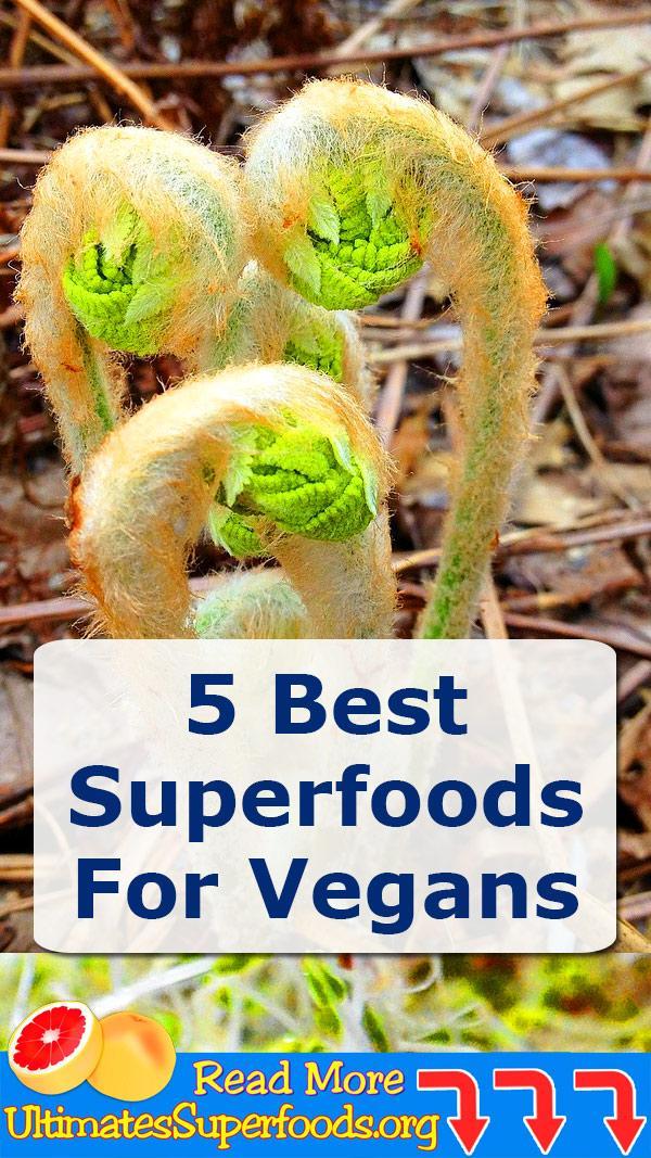 5 best suerfoods for vegans