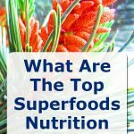 Top superfood nutrition trends