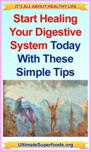 Superfood-Digestive