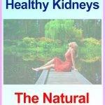 Superfood-Kidneys