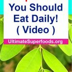 Superfoods-Daily