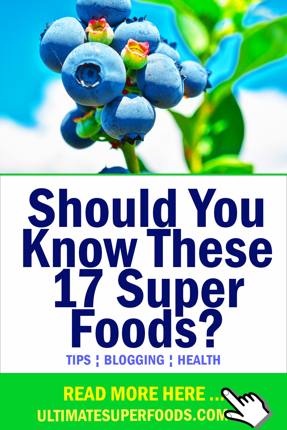 You Should Know These 17 Super-Foods